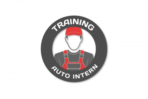 Diagnosetraining - AUTO INTERN - Training